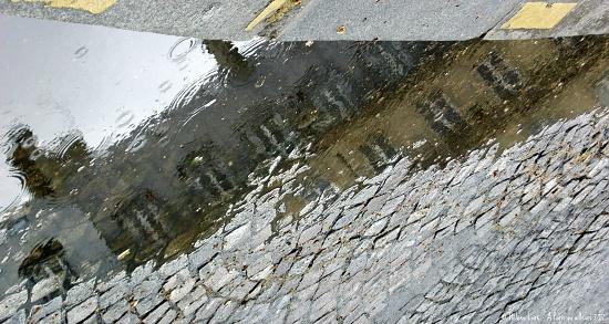 Paris in a puddle by parisouailleurs