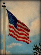 11th Apr 2012 - Old Glory