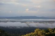 18th Aug 2017 - Morning fog