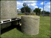 14th Apr 2012 - Round Bales