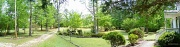 16th Apr 2012 - Front yard (garden) craptastic panoramic...