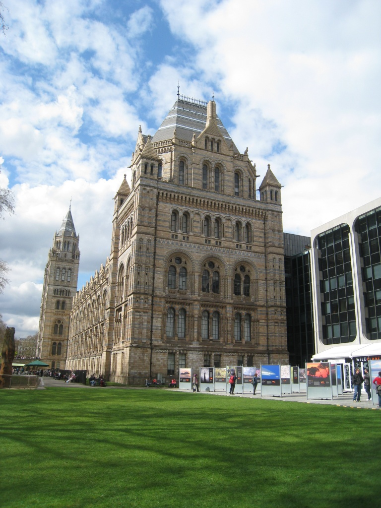 Natural History Museum, London by sarahhorsfall