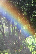12th Aug 2017 - I can see a rainbow! water, lights, camera, action, mark IV