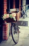 20th Apr 2012 - Beautiful bicycle basket