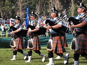 21st Apr 2012 - The pipers are piping