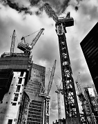 24th Apr 2012 - Cranetastic