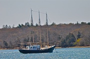 25th Apr 2012 - Schooner The Black Seal