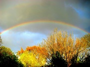 25th Apr 2012 - Boosted Rainbow