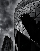 25th Apr 2012 - Gherkin & Heron
