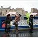 365-113 Singing in the rain! by judithdeacon