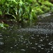 Rain! by janturnbull