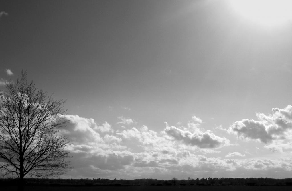 April Skies by filsie65