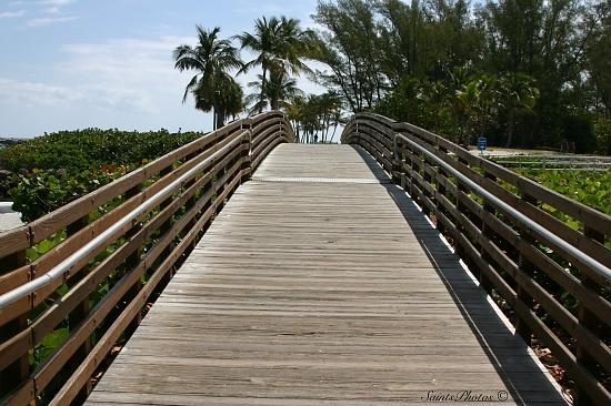 Footbridge by stcyr1up