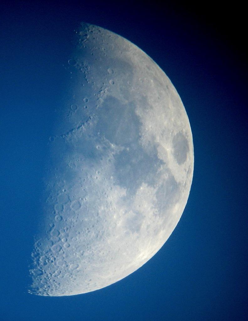 Blue Moon by filsie65