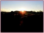 30th Apr 2012 - Sunset Gathering