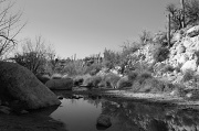 1st May 2012 - Desert Reflections In Black And White