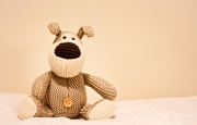 2nd May 2012 - Boofle