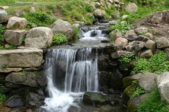 The Herring Run, Revisited, Slow Motion by lauriehiggins