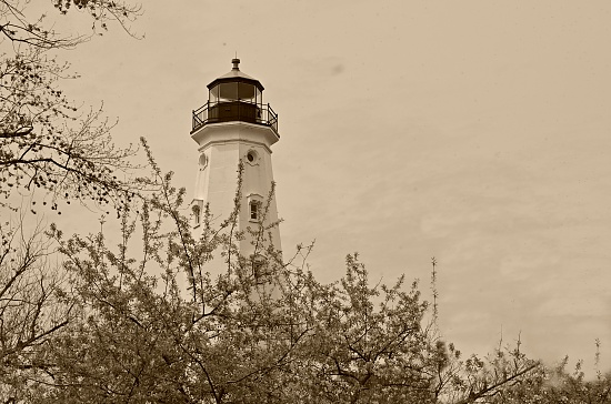 light house top by myhrhelper
