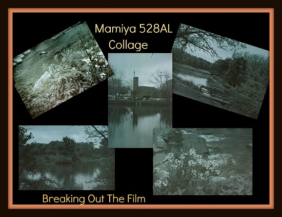 Breaking Back Into Film by digitalrn