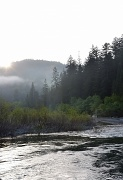 7th May 2012 - Dawn Breaks Through the Fog on the Eel River
