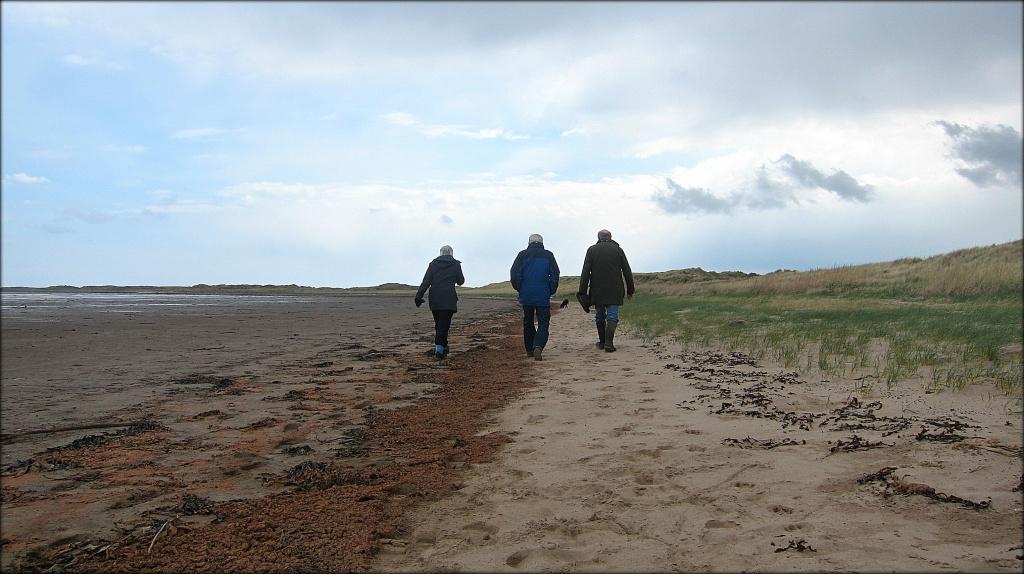 A bracing walk. by happypat