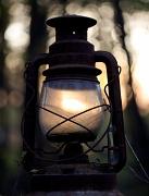 12th May 2012 - Sunlamp