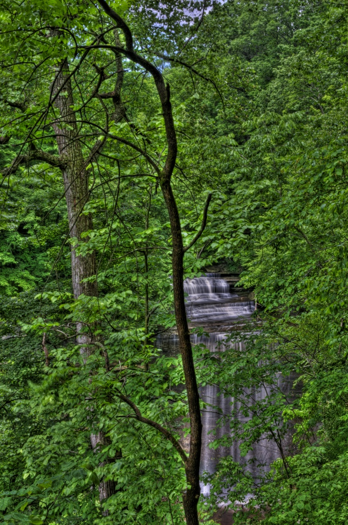 Big Clifty Falls by lstasel