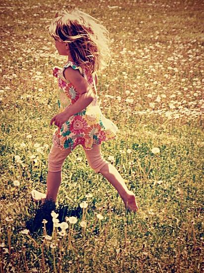 fields of blowy flowers by edie