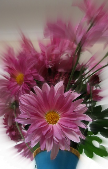 Mother's Day Flowers by mozette