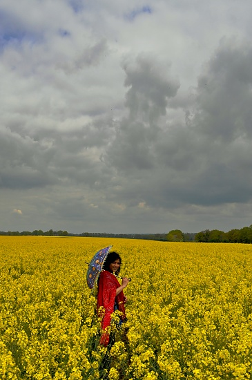 In a Sea of Yellow by andycoleborn