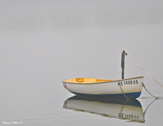 Foggy Reflections by sailingmusic