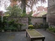21st May 2012 - Patio