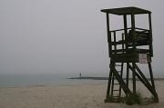 22nd May 2012 - Rain and Fog