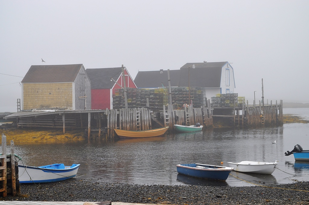 A Fog-Shrouded Morning in Blue Rocks, Nova Scotia by Weezilou