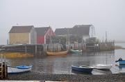 24th Jun 2010 - A Fog-Shrouded Morning in Blue Rocks, Nova Scotia