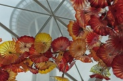 24th May 2012 - The Chihuly Garden and Glass Museum