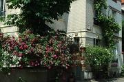 23rd May 2012 - Villa Santos-Dumont
