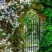 secret garden by jantan