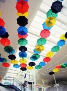 30th May 2012 - Umbrellas