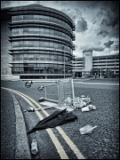 31st May 2012 - A Load of Rubbish