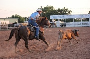 2nd Jun 2012 - Calf Roping