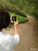5th Jun 2012 - Sneaky Capture