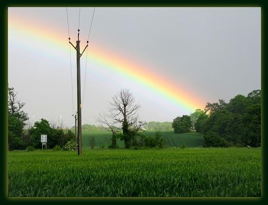 Rainbow by busylady