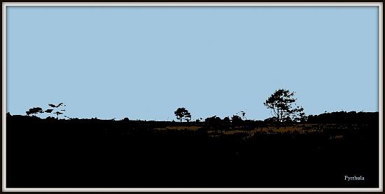 A landscape  by pyrrhula
