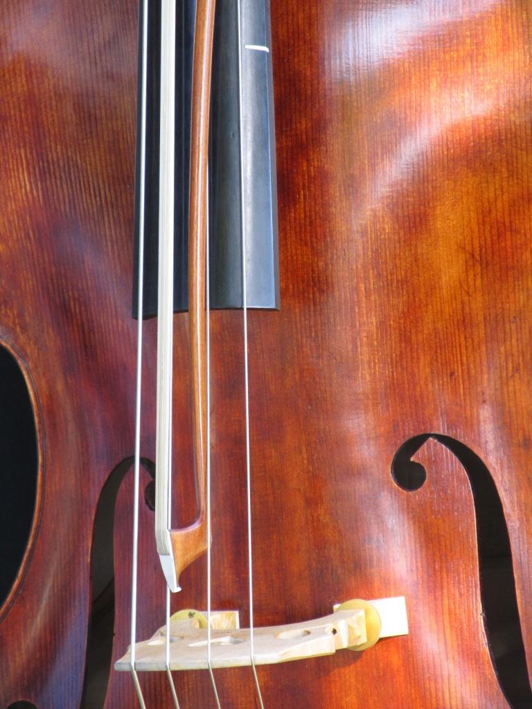 Bass by houser934