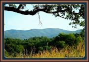 16th Jun 2012 - Mountain country
