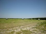 18th Jun 2012 - Harvest of hay
