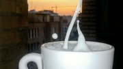 22nd Jun 2012 - Time for a cup of milk