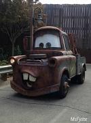 25th Jun 2012 - Mater!